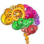 6 Brain Aging Foods To Avoid
