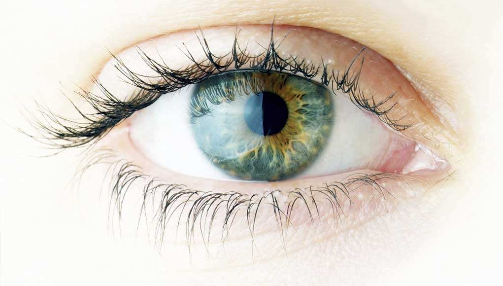 Tips To Strengthen Your Eyesight In Just Minutes