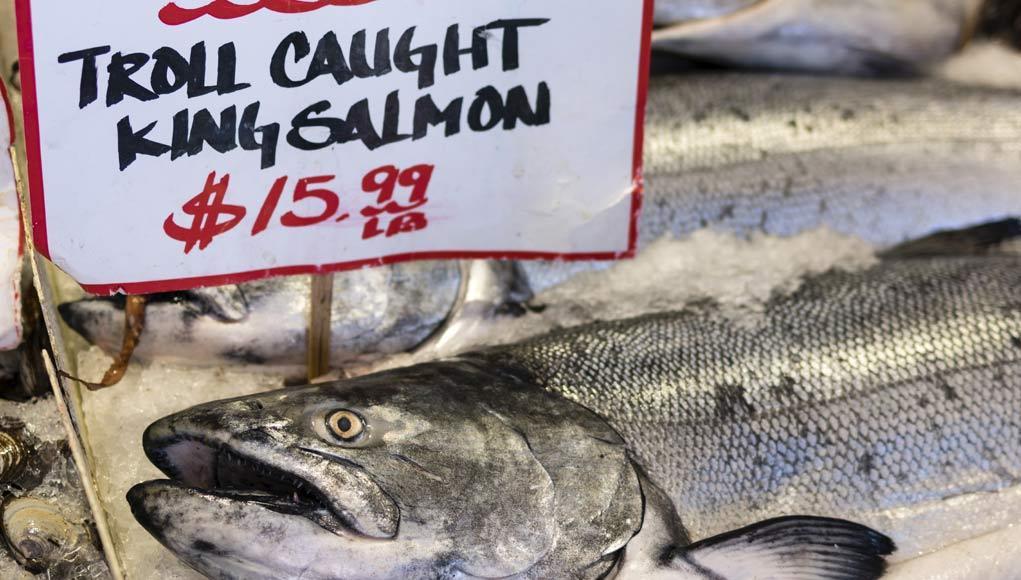 The Wild Caught Salmon Rip-Off