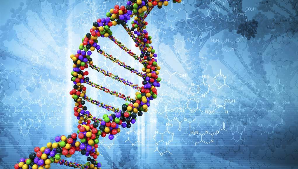 How Much Do Your Genetics Affect Your Fitness?