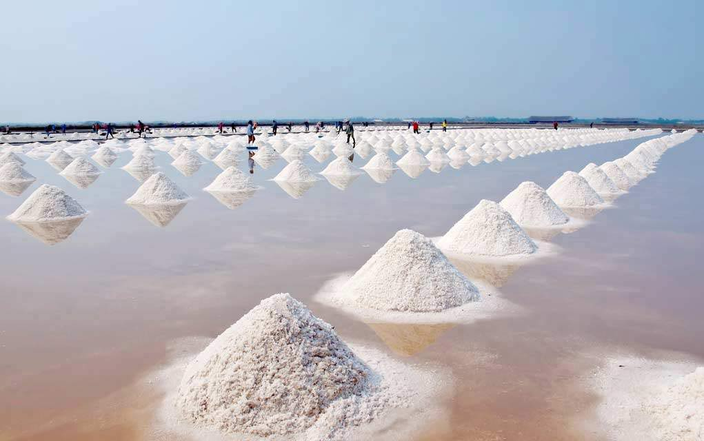 Sea Salt Contaminated With Plastic - Is Yours?